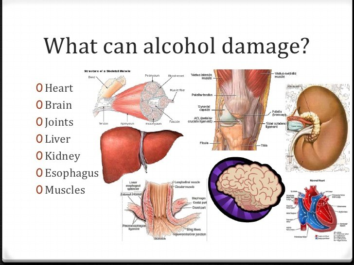 How Does Alcohol Affect The Body? - Weight Loss Groove