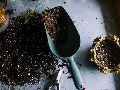 soil gardening planting garden