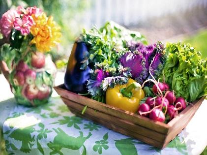 vegetables gardening planting organic healthy